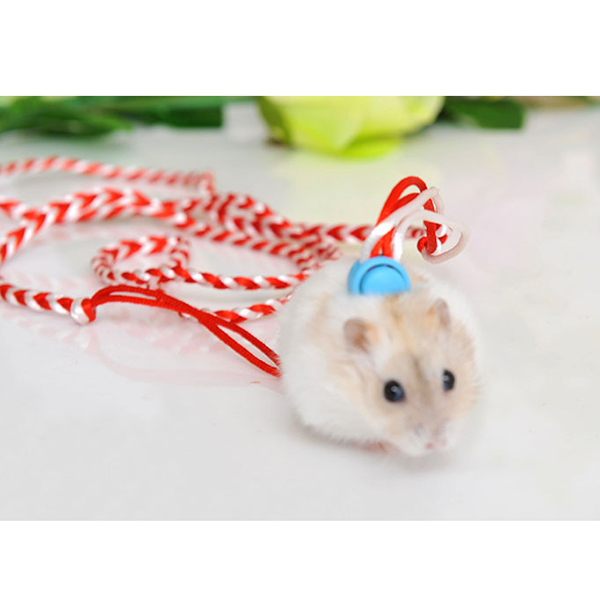 New Adjustable Leash Collar Guinea Pig Small Pets Rope Hamster Traction Rope Quality Free  Shipping