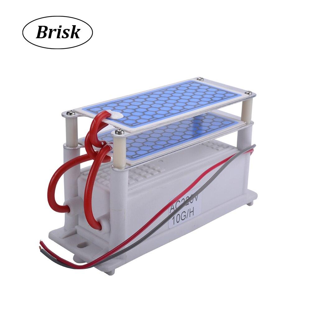 Brisk Portatile Generatore di Ozono In Ceramica Doppia Piastra Integrato In Ceramica Ozonizzatore Aria Acqua Purificatore D'aria di Ricambio 220 V/110 V 10g