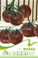 (Mix minimum order $5)1 original pack 20 pcs Mini Purple Tomato Seeds,vegetable seeds free shipping