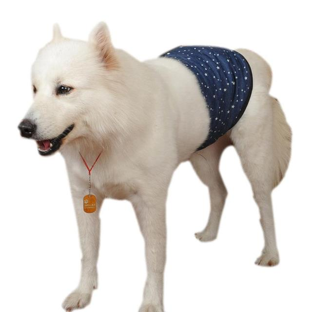 Lovely Cool Fashion Dog Clothes Big Dog Pet Physiological Pants