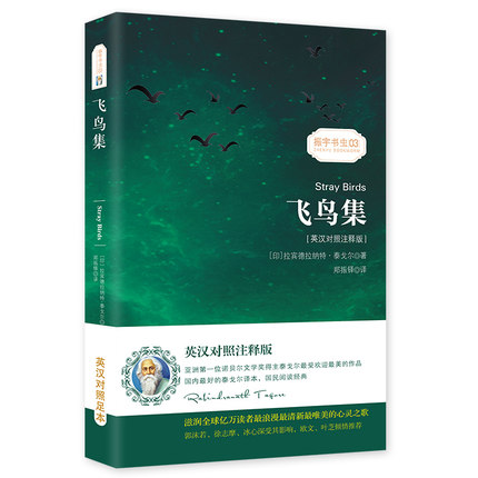 Stray Brids In English And Chinese Bilingual Story Fiction Book
