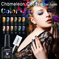 CANNI Chameleon Magnetic Cat Eye Gel Polish 51024 High Quality Nail Salon Products 12 Colors Soak off Cat Eyes Nail Gel Polish