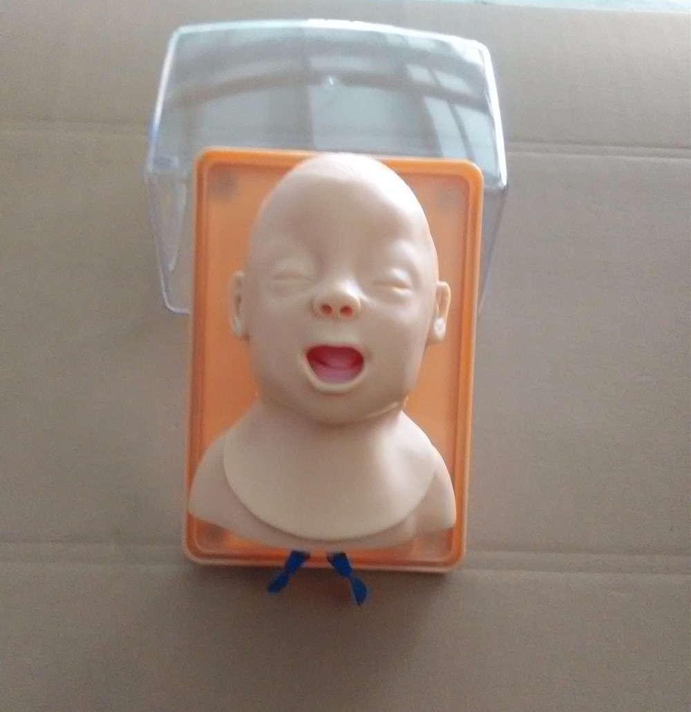 Advanced Infant Head For Trachea Intubation Model BIXJ3A W039 купить
