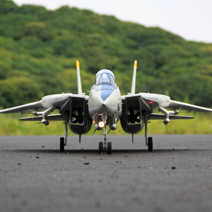 Freewing Dual 80mm rc airplane jet model F 14 Tomcat with Variable Sweep Wing KIT with