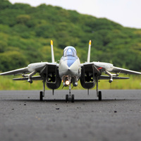Freewing Dual 80mm rc airplane jet model F 14 Tomcat with Variable Sweep Wing KIT with servos