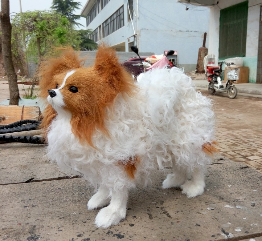 About 28x27cm simulation papillon dog toy lifelike fur for Papillon decoration