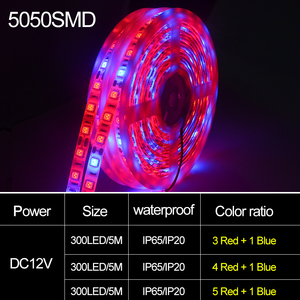 Image 2 - 5 M LED Phyto Lamps 전체 스펙트럼 LED 스트립 빛 300 LED 5050 칩 LED Fitolampy 온실 수경 식물에 대 한 조명을 성장