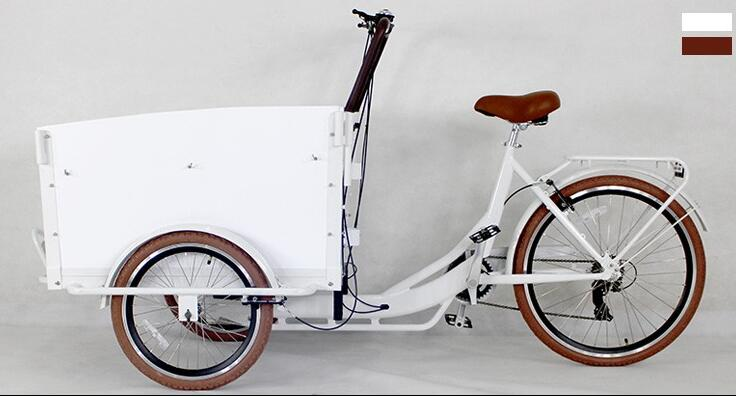Detail Feedback Questions About 3 Wheel Europe Family Cargo Bike For