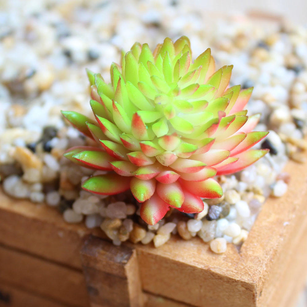 3pcs/lot New Succulent Lotus Lithops plants plastic fake Simulation Artificial flowers ornaments garden room decor 6 Colors CA