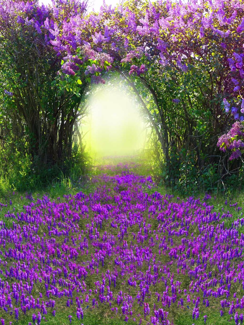 Vinyl Cloth Print Purple Flowers Backdrops For Photography