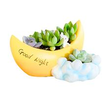 Resin moon Cacti Succulent Plant Pot Flower Planter Mini Garden Design