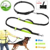 Hands Free Dog Leash For Running Walking Dual Handle Bungee Leash Reflective Stitching Adjustable Waist Belt