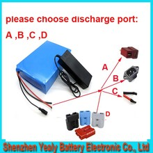 Free customs taxes lithium battery 48V 25Ah electric bike battery 48V 2000W electric scooter battery with Panasonic cell