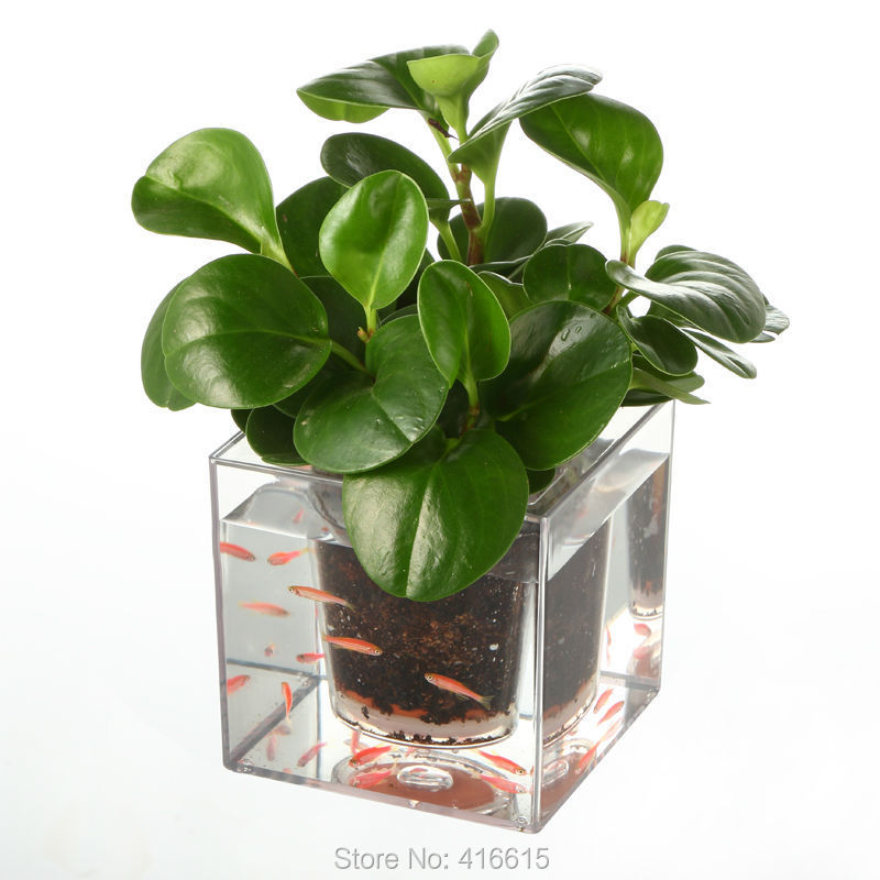 1piece clear tube plant pot flower pot self watering planter fish