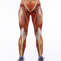 2016 HOT New Arival 3D Women Muscle Printed Leggings Knitted Fashion Skinny Leggings Polainas Calzoncillos Free