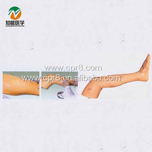 BIX-LF2 Advanced Surgical Leg Suture Training Model G001 advanced suture practice leg suture leg
