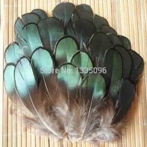 Продажа перьев фазана DIY, аксессуары для ювелирных изделий, Натуральное перо, 5-8 см, 50 шт./лот, бесплатная доставка от производителя