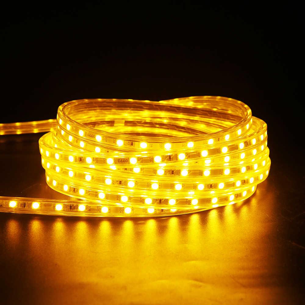 1 25meter 220v 5050 Led Strip Lighting With Eu Plug 60leds Meter Waterproof Playground Hotel Home Indoor Outdoor Decor Use Ur
