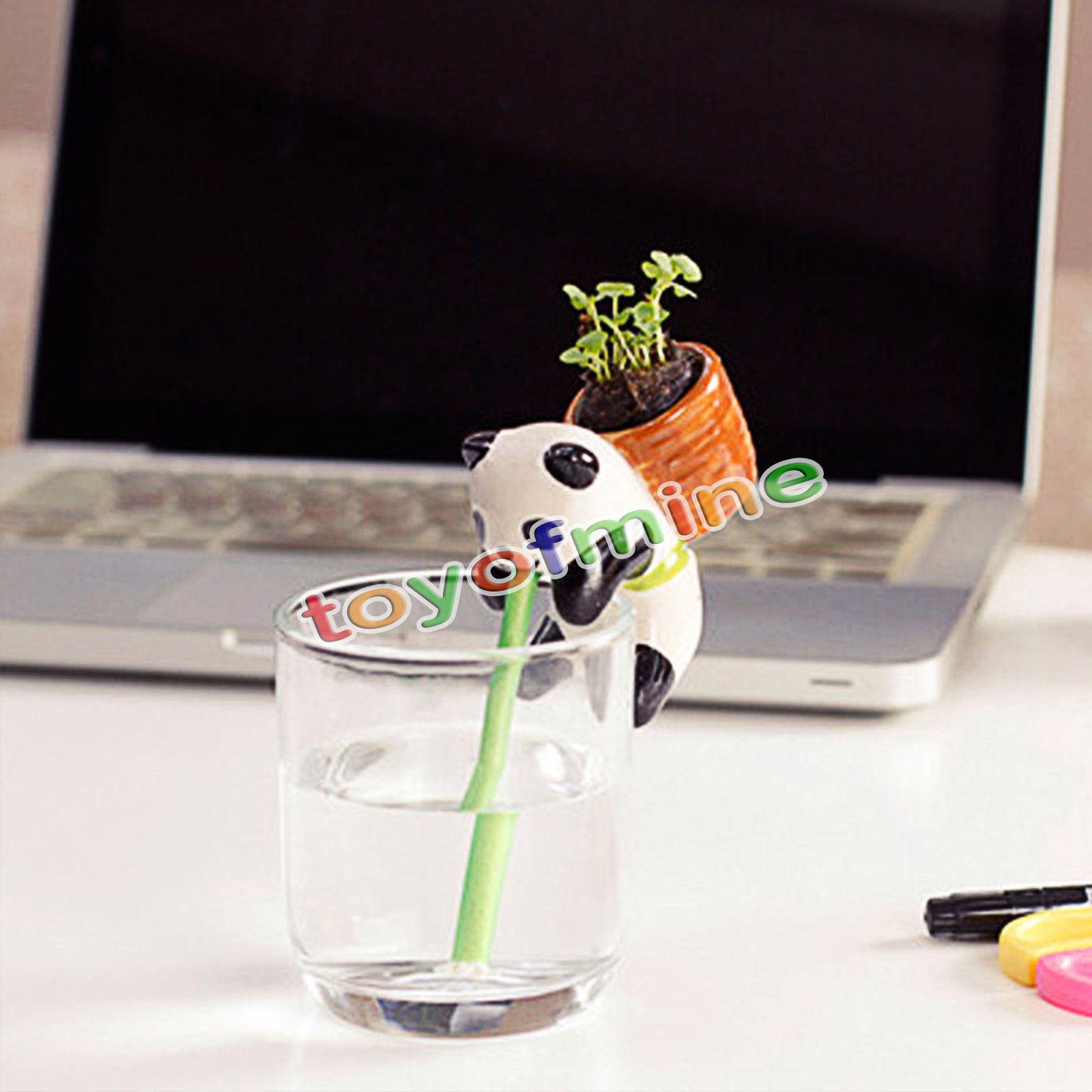 online get cheap mini self watering pots aliexpress com alibaba