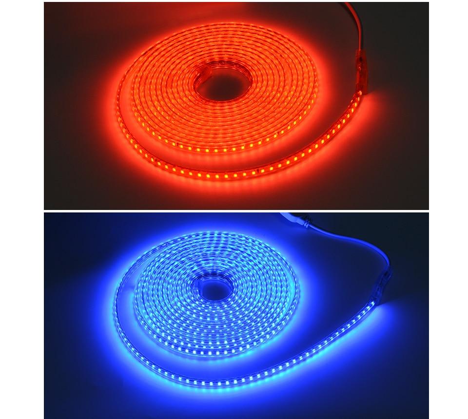 HTB1z9SZkPoIL1JjSZFyq6zFBpXad AIMENGTE Super Bright SMD2835 Dimmable 220V LED Strip Light 1M/5M/10M/15M/20M/25M Kitchen Outdoor Garden Lamp Tape with EU Plug