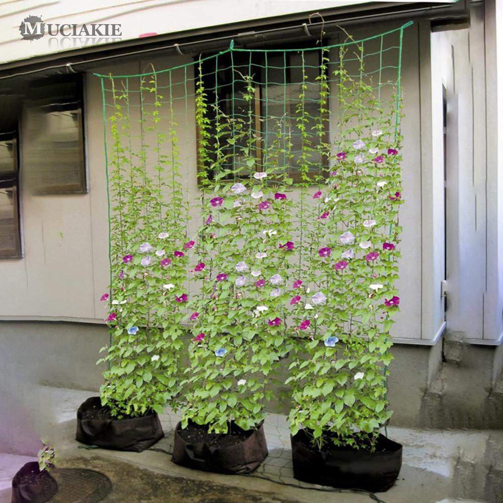 1PC Mesh 10x10cm Plastic Net Nylon Loofah Netting For Morning Glory Vine Flowers Plants Climbing Net Cucumber Vine Grow Holder