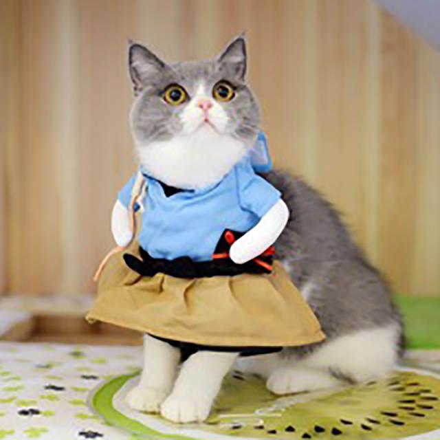 Us 751 40 Offlustige Hund Katze Kostüme Urashima Taro Cosplay Anzug Pet Bekleidung Halloween Weihnachten Kleidung Für Welpen Hunde Kostüm Für