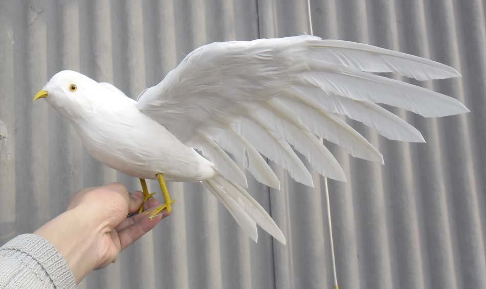 lovely simulation white pigeons toy polyethylene & furs wings seagull doll gift about 48x30cm 1229