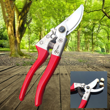 1Pcs 8 inch Stained Plastic Handle Professional Garden Tool Pruning Shears Scissors Grafting Cutting Tool