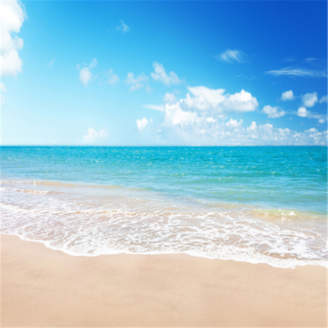 Sand Beach In Summer Sky Background: Blue Sky/Beautiful Seaside Photography Studio Background