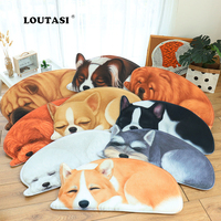 LOUTASI Door Mats for Entrance Door Character 3D dogs animal Pattern Flannel Carpets Living Room Dust Proof Mat Rug Home Decor
