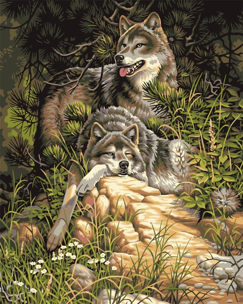2015 new Animal wolf diy digital oil painting with Frame Acrylic Canvas Painting coloring by numbers Modern wal decor picture 1
