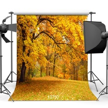 Photography Backdrops Shooting Vinyl Yellow Autumn Park 3D for Photo-Studio Leaves