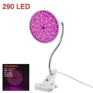 Image 5 - 36 200 290 LED bitki büyümek ampul tam spektrum fito phyto büyüyen lamba klip kapalı oda çadırı çiçek sebze sera