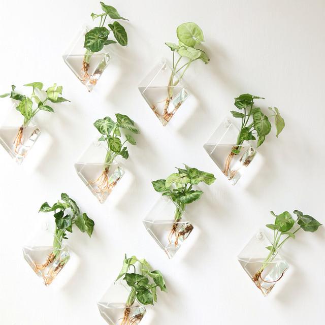 Mkono 2 Pcs Wall Mounted Glass Vase Wall Hanging Planter Plant Flower Pot Small Plants Terrarium, Diamond