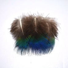 wholesale 1-3/3-8CM feather Carnival Blue Peacock Feathers Jewelry Making for Craft Wedding/Skirt decoration