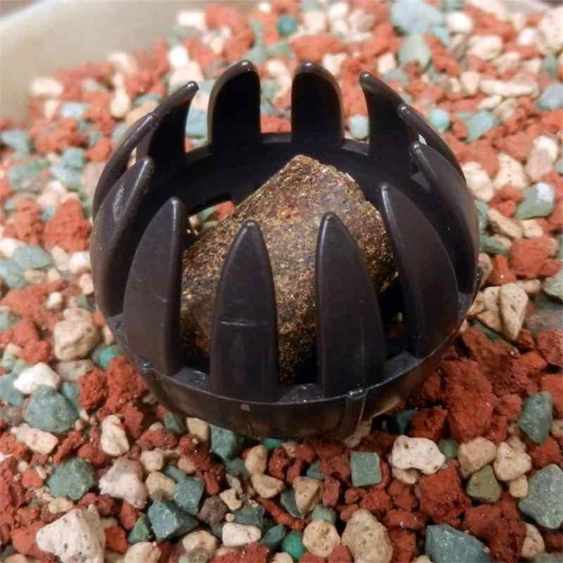 Caixa De Ferramentas Bonsai Fertilizante Fertilizantes pçs/set 10 Cesta Tampa Da Caixa Caso Cúpula Bug Portátil Panelas de Berçário Da Planta De Plástico