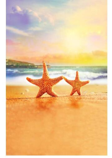 6x6FT Vinyl Backdrop Photographer,Santa,Starfish Exotic Beach Background for Baby Shower Bridal Wedding Studio Photography Pictures