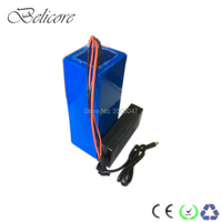 DIY li ion battery pack 24 volts electric bike battery 24V 14ah with battery charger