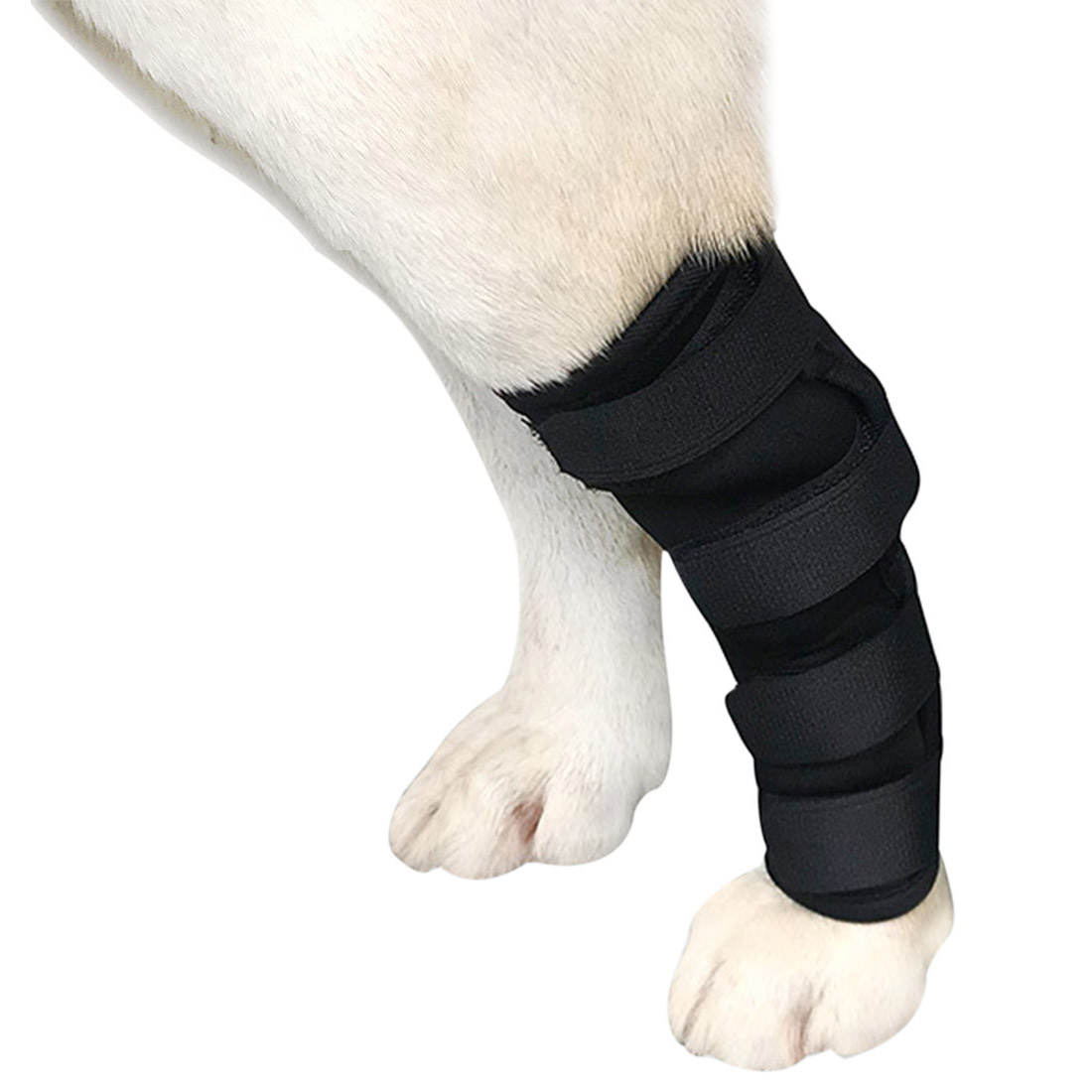 Pet Hock Brace Pet Knee Pads Recover Injury Legs Dog Protector Support Joint Wrap Dog Legs Hind Protector Pet Dog Supplies