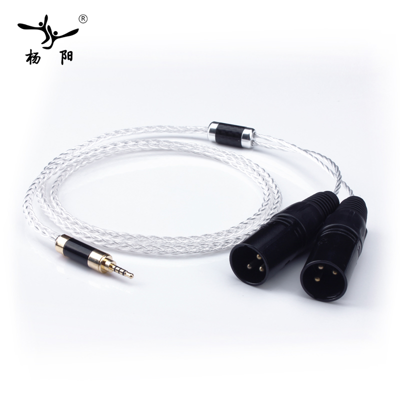 YYAUDIO Silver Plated Hifi 2.5mm TRRS Balanced to 2 XLR Male Cable For Astell&Kern AK100II,AK120II,AK240, AK380,AK320,DP-X1
