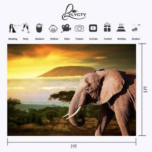 Image 3 - Dusk Grassland Background Old Elephant Natural Scenery Children Photo Studio Backdrop 150x220cm Photography Backdrops Wall
