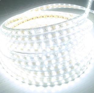5050 LED ժապավեն 220V 230V 240V 5M / Roll սպիտակ RGBY - LED լուսավորություն - Լուսանկար 1