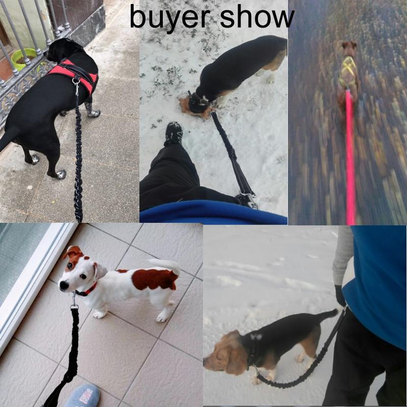 [TAILUP] Pet Dog Running Leashes Χέρια ελεύθερα για - Προϊόντα κατοικίδιων ζώων - Φωτογραφία 6