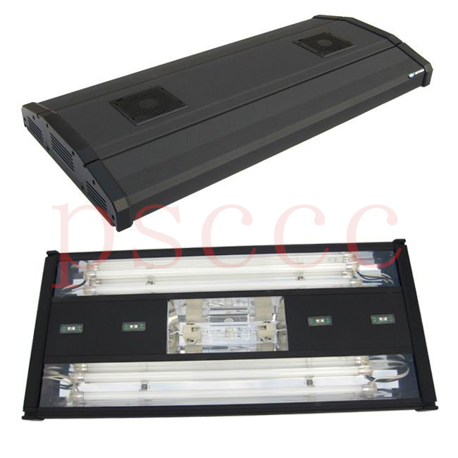 Mh 60 Metal Halide T5 Led Aquarium Light Marine Coral: Online Buy Wholesale Odyssea Cfs From China Odyssea Cfs