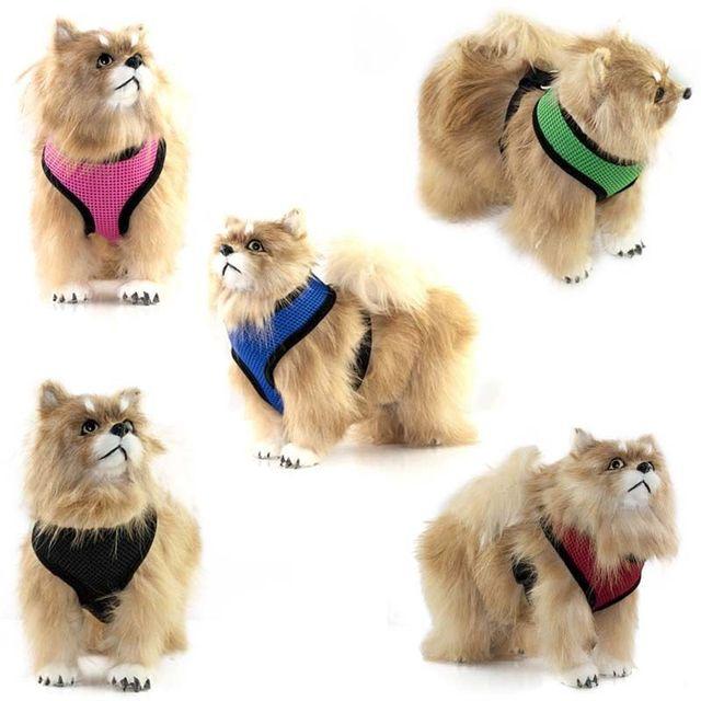 Mignon Petit Chien En Nylon Harnais Chat Pet Harnais ensemble Chihuahua  Bichon Pet chien Accessoires Laisse 39c32c5effce
