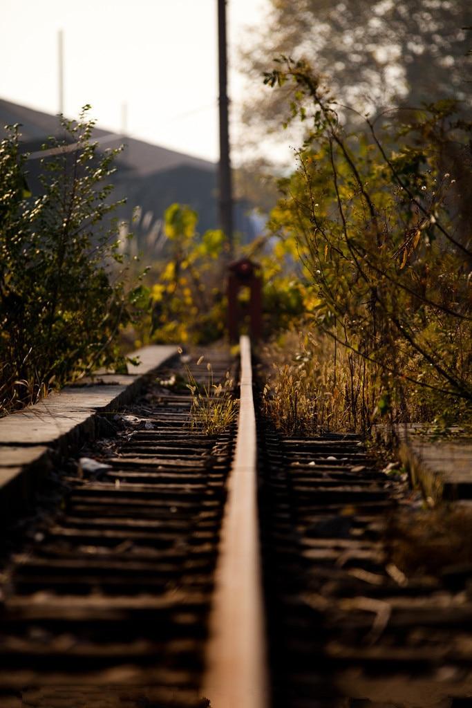 5x7ft Vinyl Custom Railway Theme Photography Backdrops Prop Photo Studio Background NTG-291