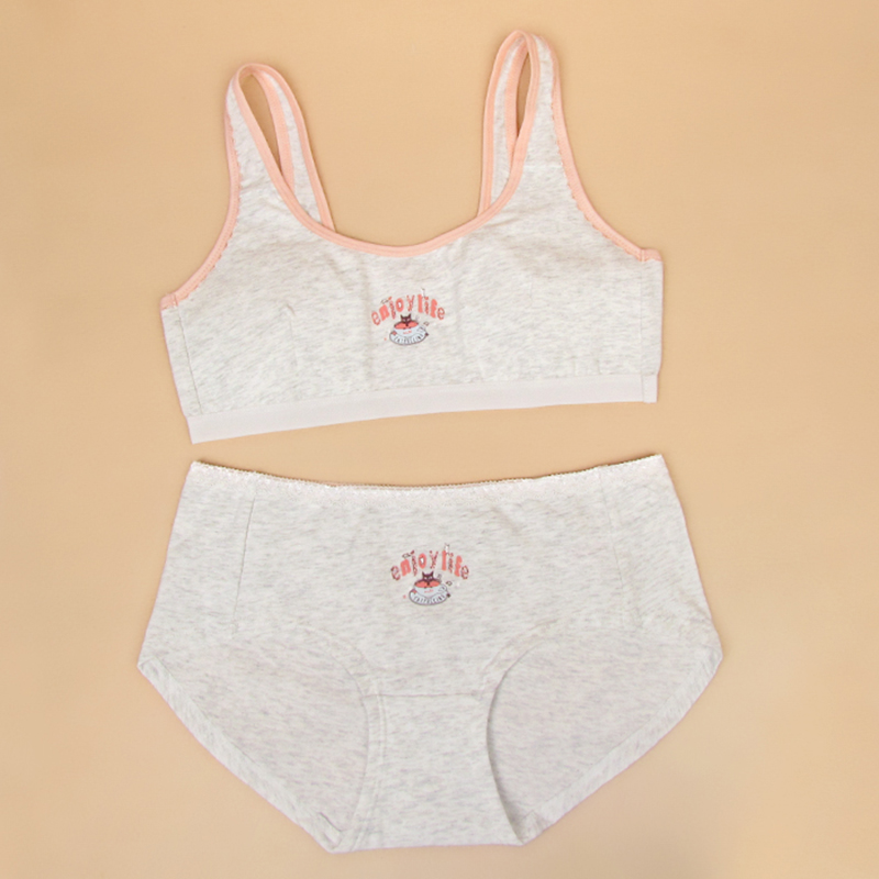 6f04ee659a473 New Arrival Feichangzimei Teenage Girl Underwear Girls Bra And Panties  Cotton Gray Blue AA Cup Training Bra Set 100150S-in Bras from Mother   Kids  on ...