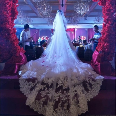 5 Meters Full Edge With Lace Bling Sequins Two Layers Long Wedding Veil With Comb White Ivory Bridal Veil 2019(China)