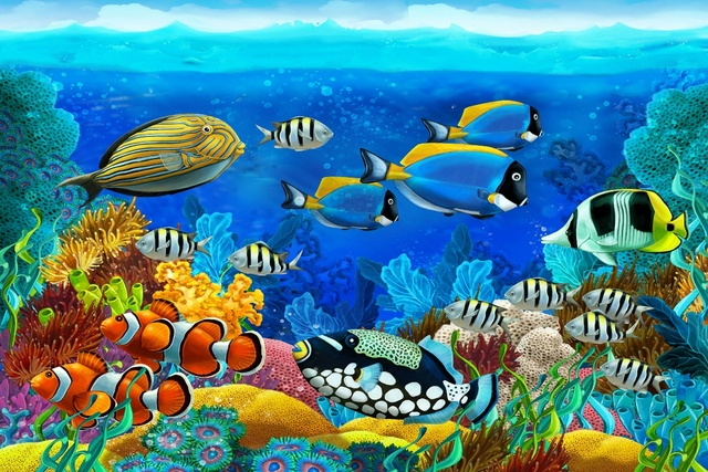 Tropical Sea Seabed Fish Corals Underwater Ocean Animals KD091 Living Room Home Wall Art Decor