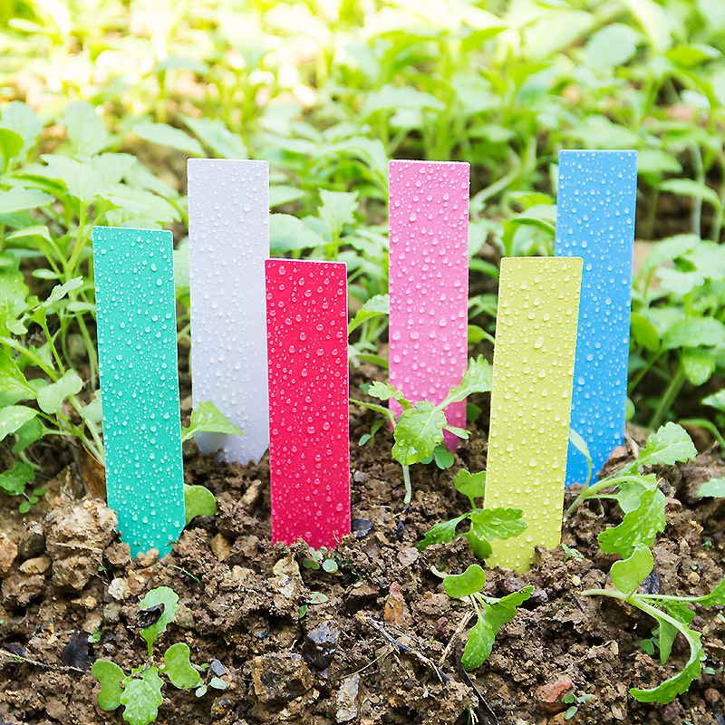 100pcs Easy Plastic Plant Labels Garden Stake Seed Label Tags 6x10cm Pot Marke